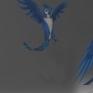 折翼鳥動態連續圖對於鳥類動態模擬的連續圖。 </br>折翼鳥:2D概念設計。 (建模與貼圖-張繼堯)